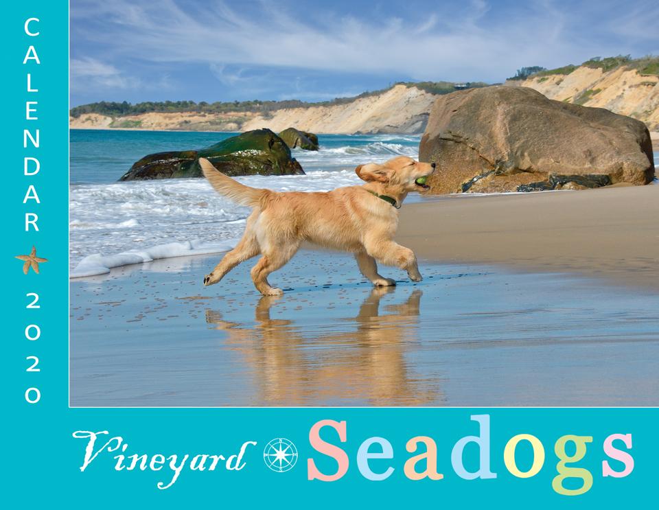 2020 Vineyard Seadogs Calendar - cover