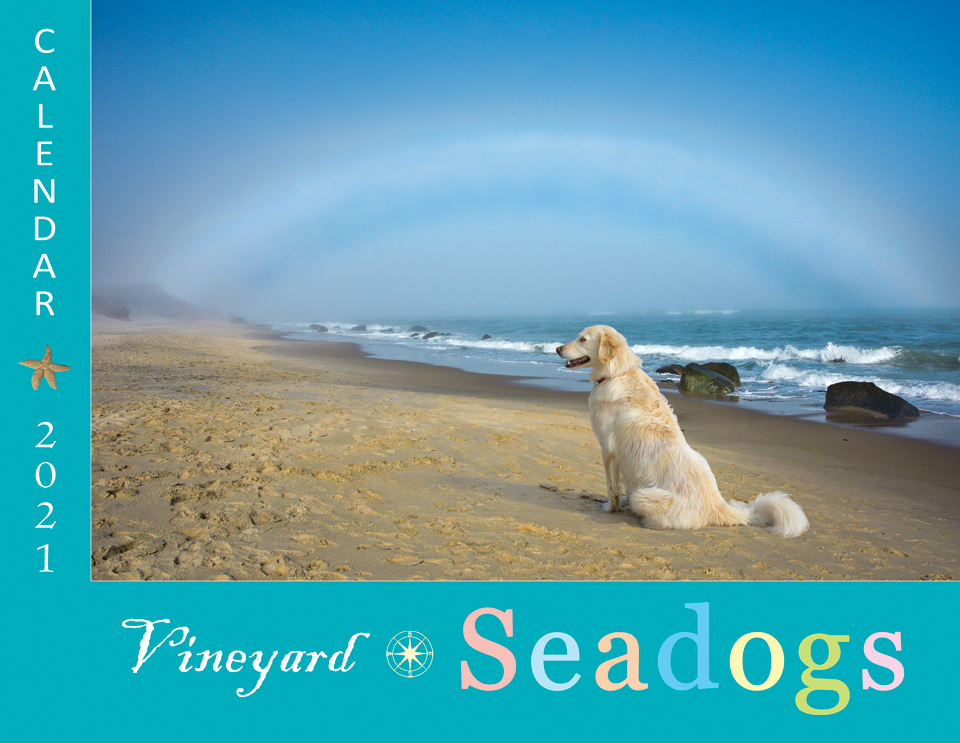 VINEYARD SEADOGS CALENDAR 2021